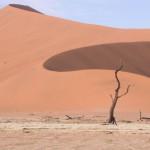 Touraco Travel Services - Sossusvlei Sanddünen - Klassisches Namibia