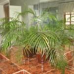 Touraco Guesthouse Bathroom 6