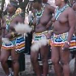 Touraco Tour - KwaZulu-Natal