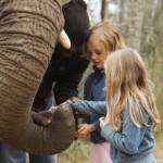 Touraco Tours - Elefanten Tour