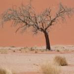 Touraco Travel Services - Sossusvlei - Namibia-Botswana-Victoriafälle