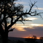 Touraco Travel Services - Sonnenuntergang bei Sossusvlei - Namibias Wüste und Küste