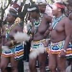 Touraco Tours - Lesedi Cultural Image