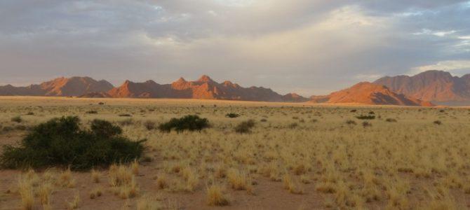 Rovos Rail Namibia Safari