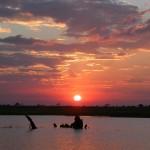 Touraco Travel Services - Sunnenuntergang am Zambazi