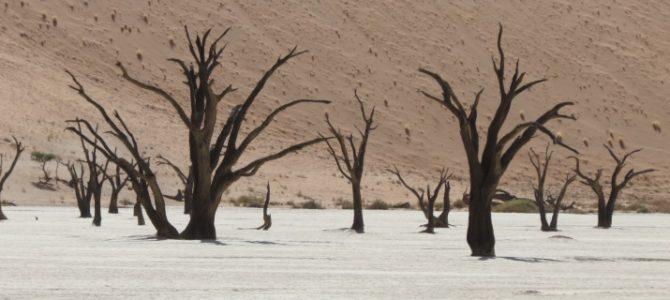 Der Süden Namibias