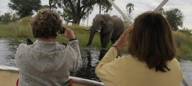 Botswana Wildparks – Unterkunft Safari – 13 Tage