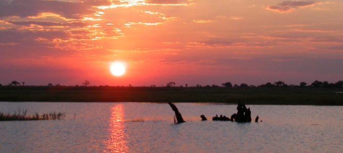 Zimbabwe Botswana – Zelt Safari – 16 Tage